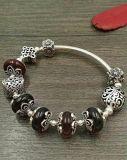 DIY Armbanden, Natuurlijke Amber, S925 de Zilveren Geparelde Juwelen van Armbanden