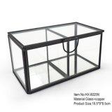 Rectángulo de almacenaje cristalino de cristal de la joyería de la alta calidad con dos compartimientos
