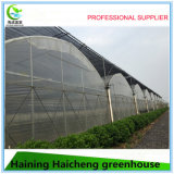 Chambre verte d'Agricultue de coût bas d'Agrotime