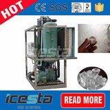 Icesta 10t/24hrs Tubo Industrial fábricas de gelo com sistema de embalagem de gelo
