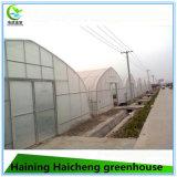 가장 싼 농업 강철 녹색 집