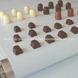 백색 음식 급료 초콜렛 PVC 컨베이어 벨트