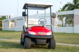 Автомобиль гольфа Seater оптовой продажи 2 электрический с коробкой льда