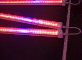 El cultivo de interior de los sistemas de iluminación 4FT tubo T8 Luz crecer hidropónico