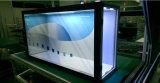 """24 """" cajas de presentación transparentes de la publicidad de pantalla del LCD"""
