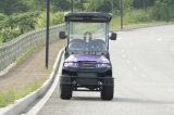 Automobile elettrica di golf dell'allume 48V delle sedi all'ingrosso del telaio 4