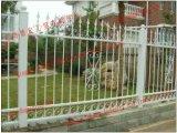 溶接された先峰の庭の塀の錬鉄の塀の裏庭の塀