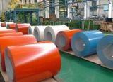 Hoja de Acero galvanizado recubierto de color con precio competitivo