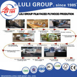 Film Faced Plywood Board Price
