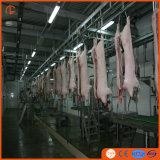 Prezzo competitivo! ! ! Il taglio del maiale ha veduto delle strumentazioni automatiche di Pigslaughter