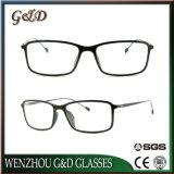 최신 새로운 디자인 Ultem 호리호리한 스테인리스 7301를 가진 플라스틱 Eyewear 안경알 광학 프레임