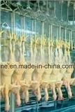 Haak de van uitstekende kwaliteit van de Lijn van het Gevogelte van het Roestvrij staal
