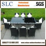 Meubles en osier/salle à manger en osier Set/chaise en rotin (SC-B8849-B)