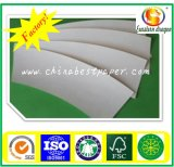228g Coated Paper Cup-Color Blanco