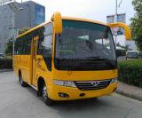 La Cina 6.6 tester di lunghezza 25 delle sedi di bus della città