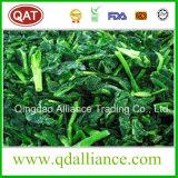 IQF gefrorener organischer gewürfelter Schnitt-Spinat von Getreide 2016