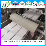 20cmの幅PVCパネルPVC天井板の印刷(RN-04)