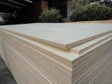 Madera contrachapada de madera blanca blanqueada del álamo