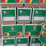 Chino fresco Qinguan de Apple