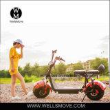 60V 800W1000W Harleyの脂肪質のタイヤの電気自転車の/Citycoco /Seev /Wolfの脂肪質のタイヤの電気スクーターHarley