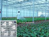 Ventilador de ventilação do exaustor do duto para aves domésticas/indústria/fábrica/estufa