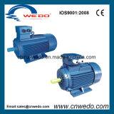 Y2 de la série du moteur électrique triphasé asynchrone (0.12~315KW)