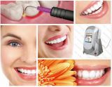 Laser dental dental do diodo da alta qualidade 980nm do laser