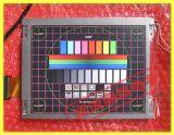 """8.4 """" LCD 위원회 (LTM084P363, LTM08C351)"""