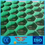 Herbe en plastique de PP/HDPE pavant le réseau