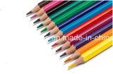 lápis plásticos da cor 12PCS na forma sextavada com extremidade Sharpened