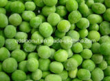 2015crop IQF Green Pea