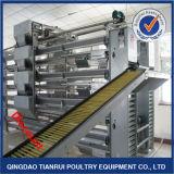 Equipo de cultivo automático galvanizado caliente de las capas de las aves de corral del marco de H