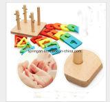 Forma geométrica Brinquedos de madeira DIY Toy Intelectual
