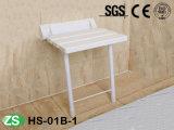 浴室の年配者のための壁に取り付けられた折りたたみのシャワーのシート