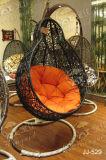 Стул качания, напольная мебель, мебель сада (JJ-529)