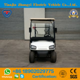 Carro Tourist clássico elétrico de 2 assentos do tipo de Zhongyi mini com Ce e certificação do GV