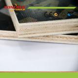 21mm stellte schwarzer Brown das Firmenzeichen Dynea Film Marinefurnierholz für konkrete Verschalung gegenüber