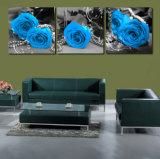Der 3 Stück-heißes Verkaufs-modernes Wand-Farbanstrich-Rosen-Farbanstrich-Ausgangsdruckt die dekorative Wand-Kunst-Abbildung, die auf Segeltuch-Haus angestrichen wird, Mc-201