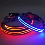 Longuette LED Flash Dog Collar (MDC152025)