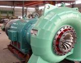 Tipo de sistema de turbina Hydo francisco