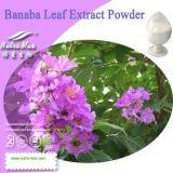 Nutramax Banaba Leaf Extract Powder (кислота 1-20%, 98% Corosolic)