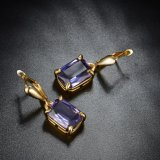 Het Goud van de Juwelen van de manier plateerde de Grote Oorring van de Steen voor Vrouwen