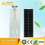 Indicatore luminoso solare del Ce del IP 65 di disegno e della via LED di Hors per la fabbrica esterna di illuminazione della strada
