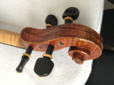아름다운 프레임 단풍나무 바이올린
