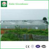 Парник полиэтиленовой пленки Multispan для садоводства цветка огурца томата