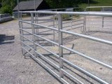 Équipement de manutention des bovins, chargement de la rampe, Pesage des caisses, panneaux et portes Livre