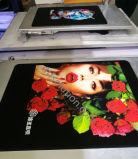 디지털 직물 인쇄공, 안료 잉크 인쇄를 가진 t-셔츠 인쇄공