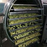 10-200 máquina de secagem de gelo do vácuo do M2 para a indústria alimentar