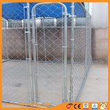 Fio de ligação em cadeia no exterior da caixa de Cão caixa Run