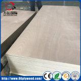 El primer grado Okoume madera contrachapado de abedul/Comercial para los muebles y gabinetes